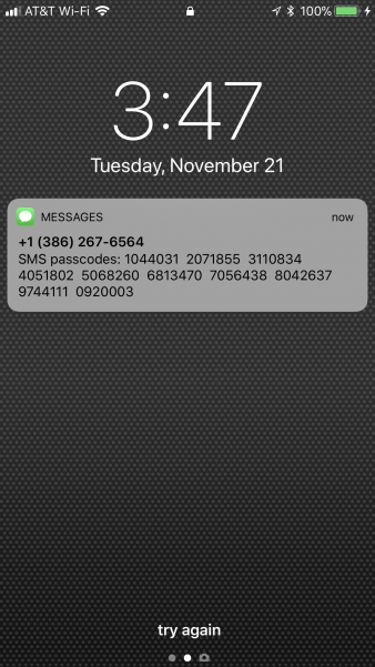 iPhone screenshot SMS message